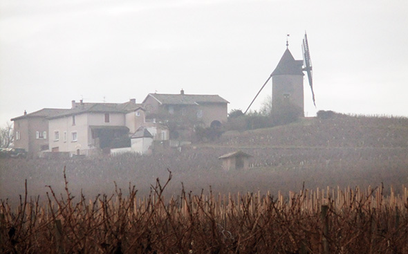 Le-Moulin-a-Vent
